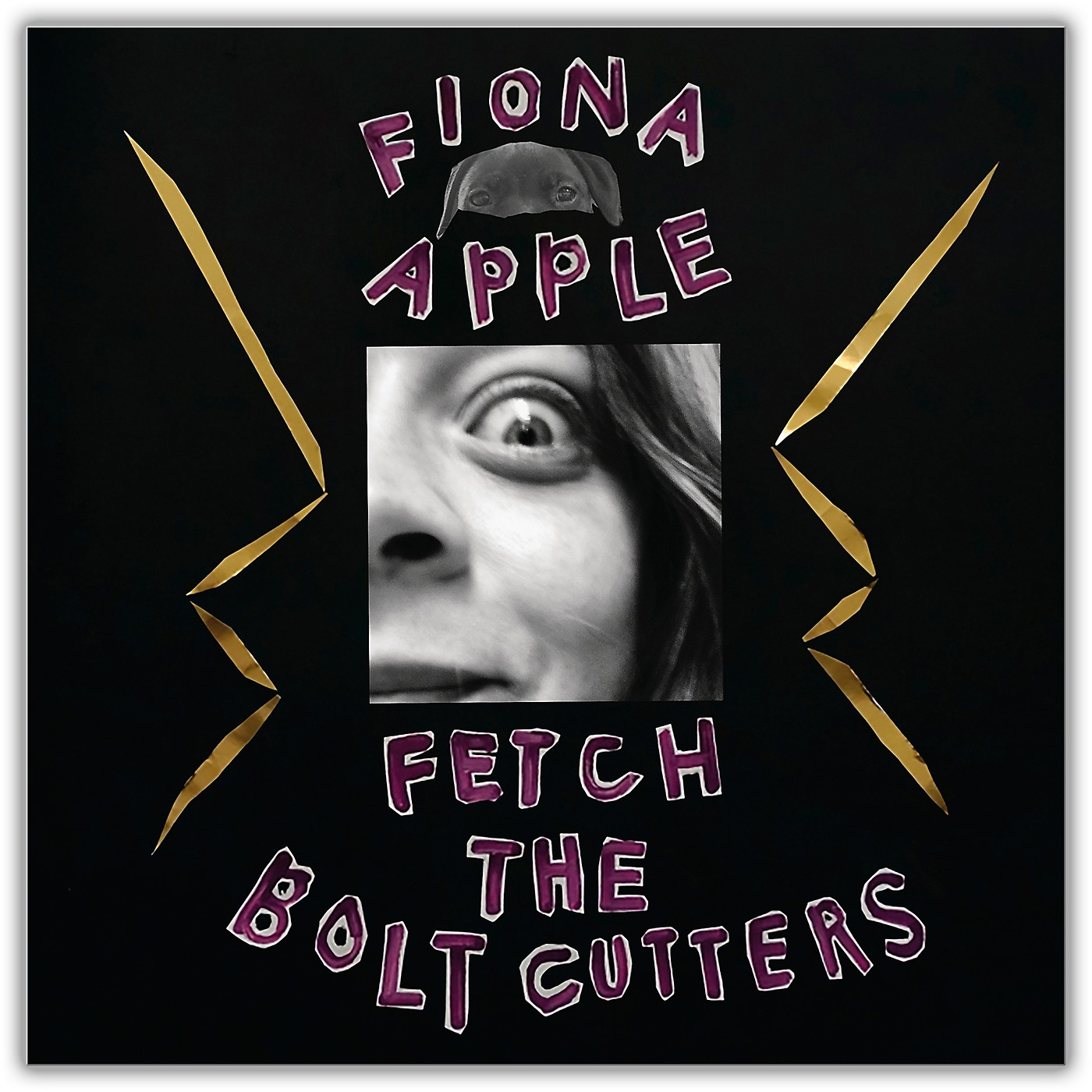 Sony Fiona Apple - Fetch the Bolt Cutters [2LP] thumbnail