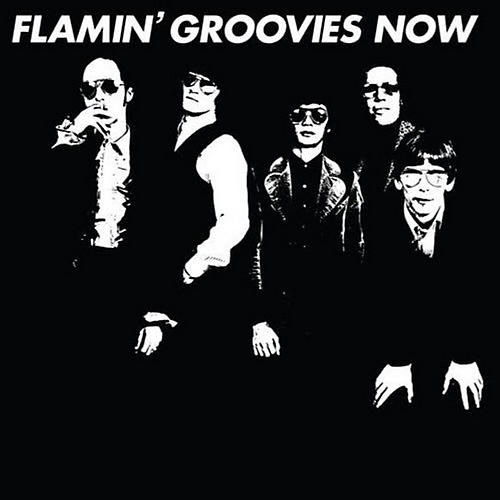 Alliance Flamin' Groovies - Now thumbnail