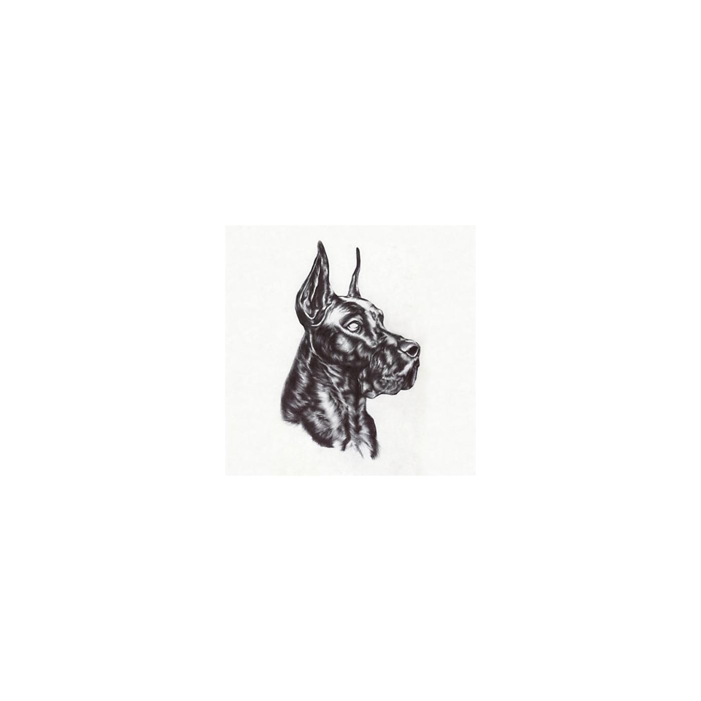 Alliance Great Dane - Alpha Dog thumbnail