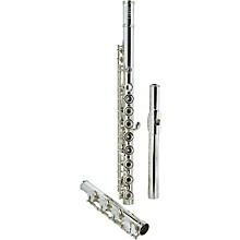 Haynes Handmade Drawn Tone Hole Model Professional Flute