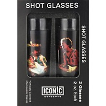 Hal Leonard Jimi Hendrix 2 Piece Shot Glass Set Silhouettes Color Aluminum Sleeves