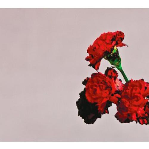 Alliance John Legend - Love in the Future (CD) thumbnail