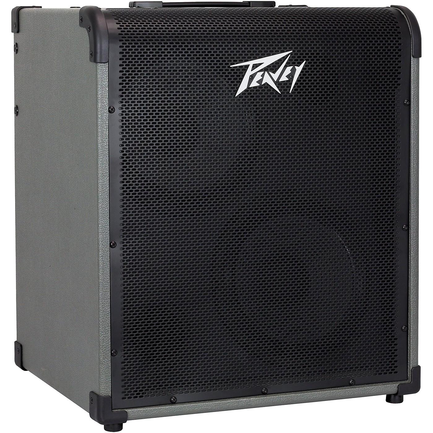 Peavey MAX 300 300W 2x10 Bass Combo Amp thumbnail