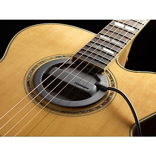 Fishman Neo-Buster Single-Coil Acoustic Guitar Soundhole Pickup/Feedback Buster-thumbnail