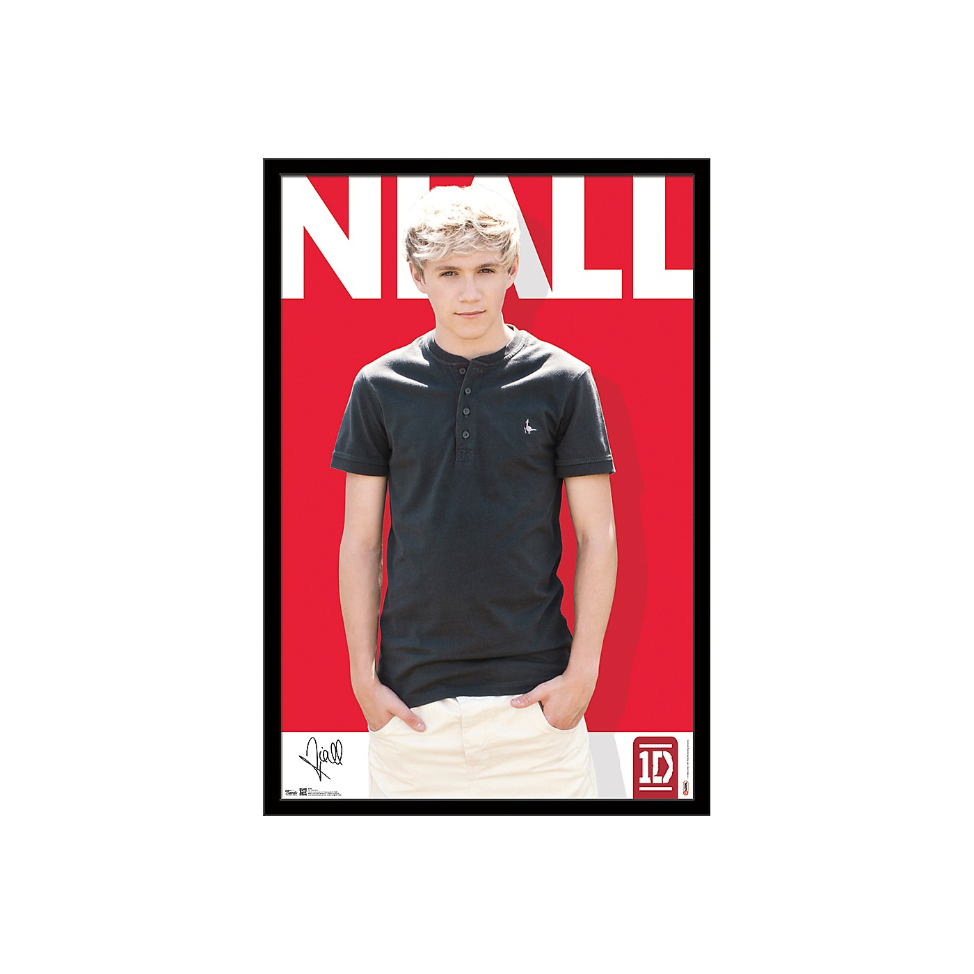Trends International One Direction - Niall Horan Poster thumbnail