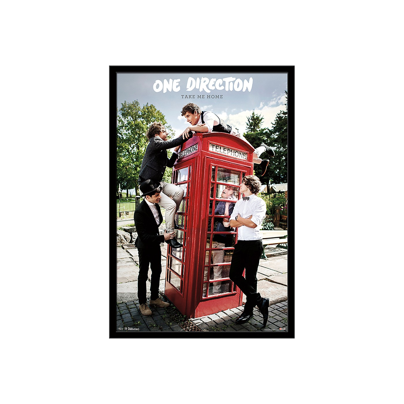 Trends International One Direction - Take Me Home Poster thumbnail