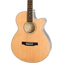 Epiphone PR-4E LE Acoustic-Electric Guitar