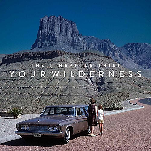 Alliance Pineapple Thief - Your Wilderness (Picture Disc) thumbnail