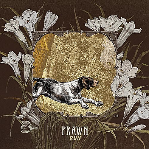 Alliance Prawn - Run thumbnail