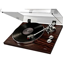 ION Pro80 Record Player