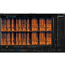 iZotope RX 6 Standard Crossgrade From Elements/PIP