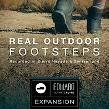 Best Service Real Outdoor Footsteps: EUS Expansion