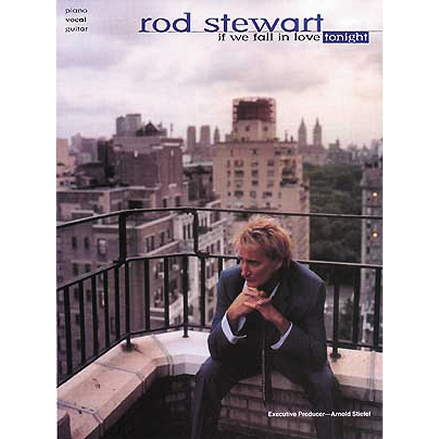 Hal Leonard Rod Stewart If We Fall In Love Tonight Piano, Vocal, Guitar Songbook thumbnail