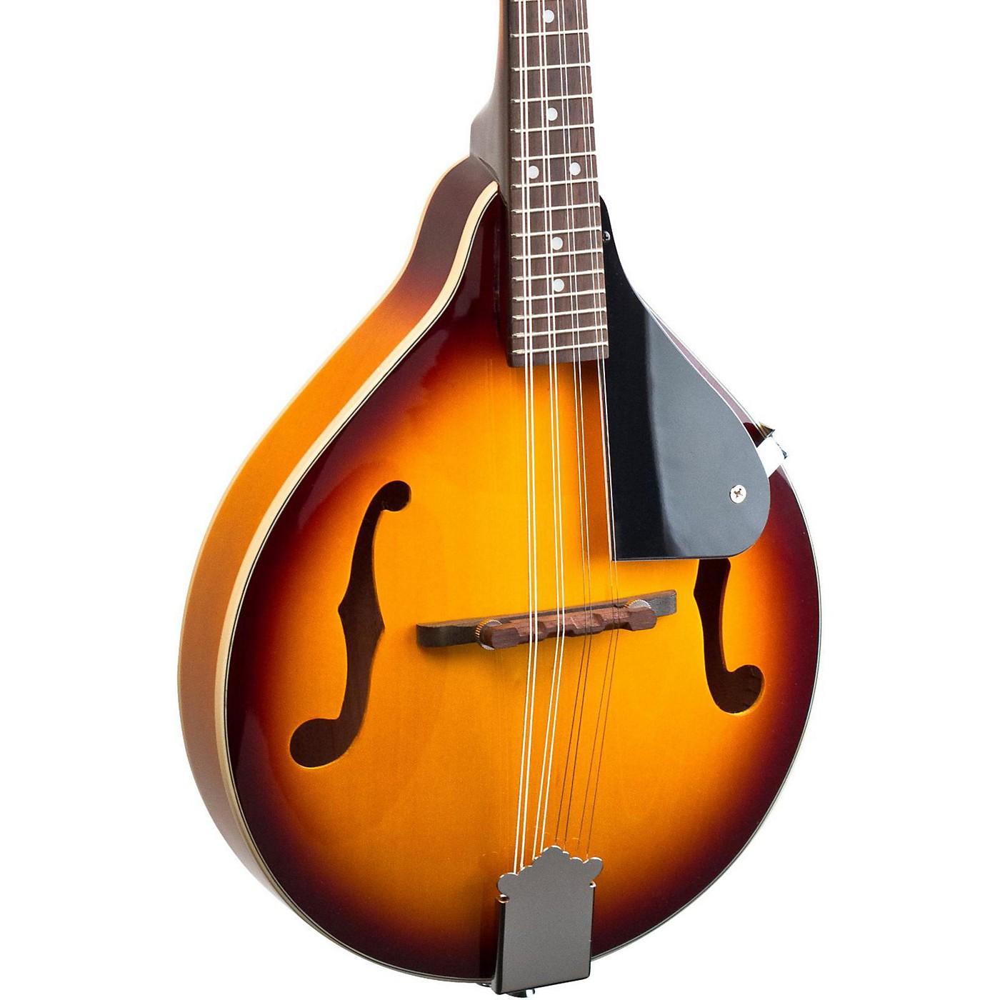 Savannah SA090-TSN A Model Mandolin thumbnail