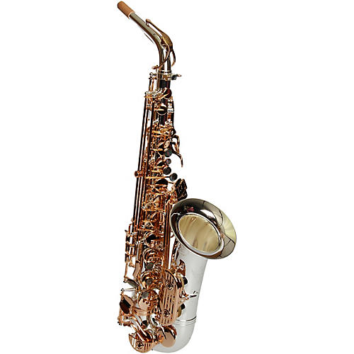 Sax Dakota SDA-XG 404 Professional Alto Saxophone thumbnail