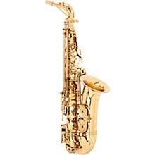 Theo Wanne SHAKTI Professional Alto Saxophone
