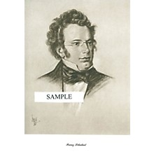 Music Sales Schubert (Lupas Large Portrait Poster) Music Sales America Series