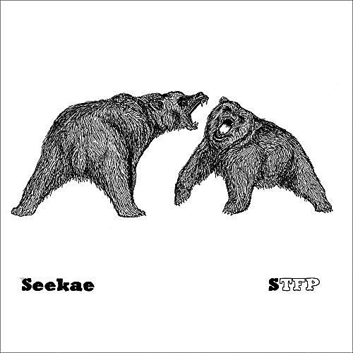 Alliance Seekae - Dome / Sound of Trees Falling on People thumbnail
