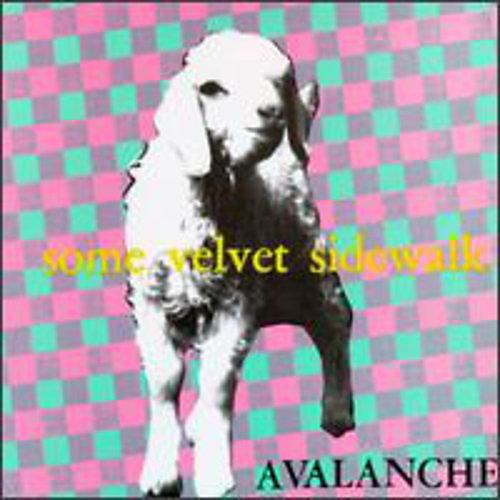 Alliance Some Velvet Sidewalk - Avalanche thumbnail