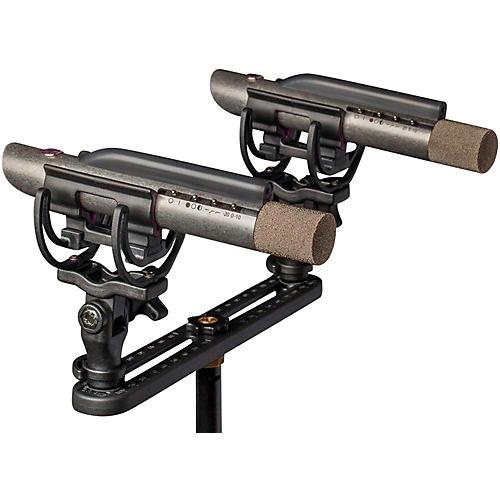 Aston Microphones Starlight Stereo Pair thumbnail