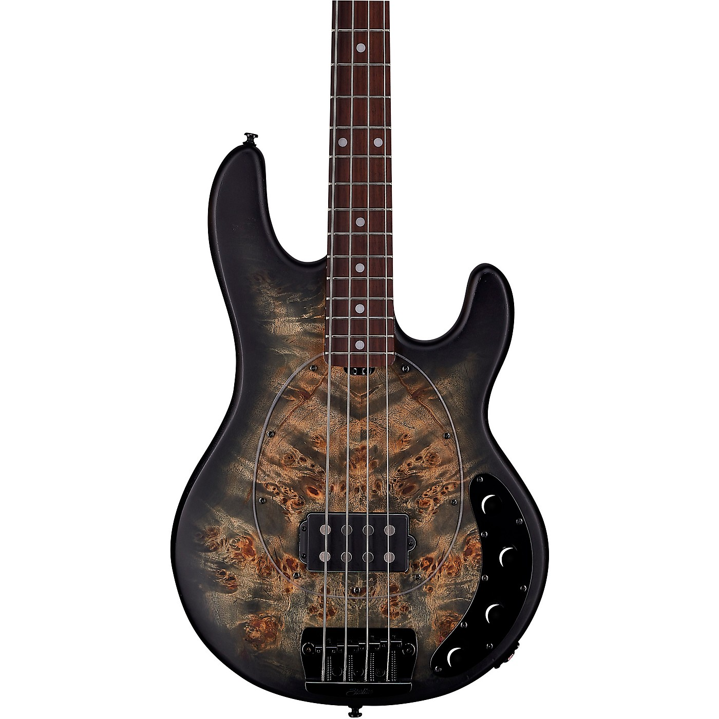 Sterling by Music Man StingRay Roasted Maple Neck Burl Top Bass thumbnail