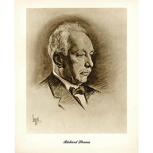 Music Sales Strauss (Lupas Small Portrait Poster) Music Sales America Series thumbnail