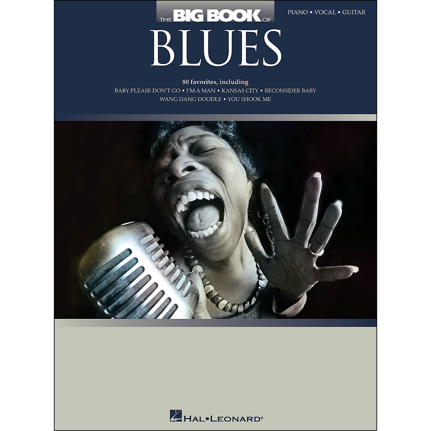 Hal Leonard The Big Book Of Blues arranged for piano, vocal, and guitar (P/V/G) thumbnail