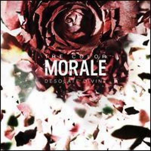 Alliance The Color Morale - Desolate Divine thumbnail