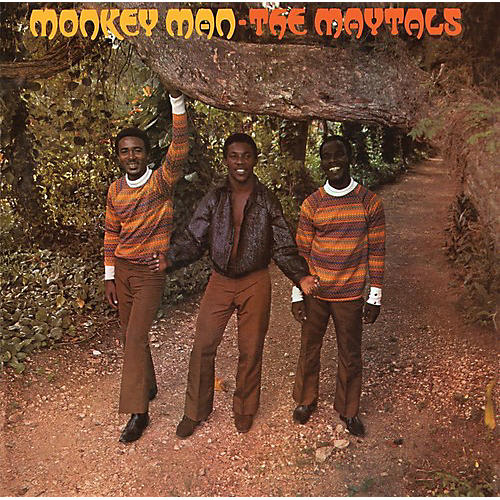 Alliance The Maytals - Monkey Man thumbnail