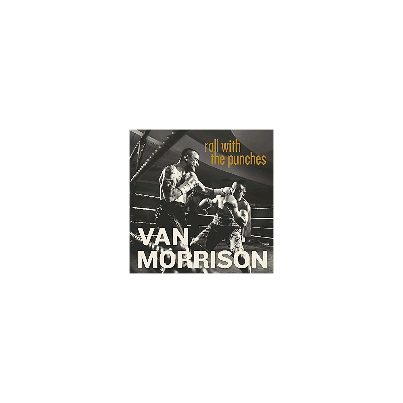 Alliance Van Morrison - Roll With The Punches thumbnail