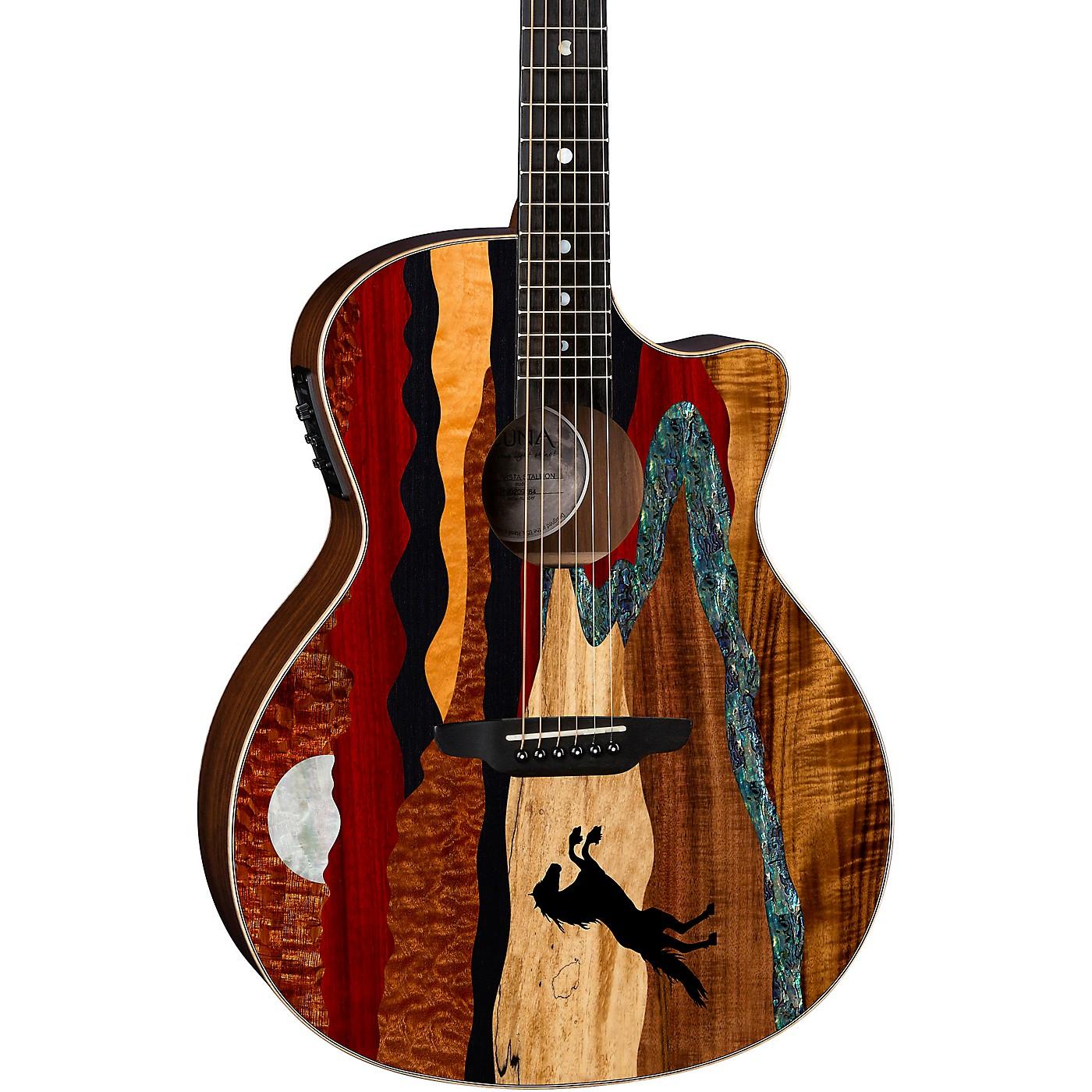 Luna Guitars Vista Stallion Acoustic-Electric Guitar with Case thumbnail