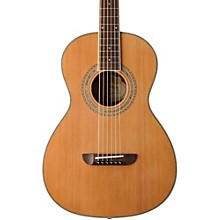 Washburn WP11SNS Parlor Acoustic Guitar